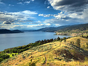 Okanagan Framed Prints - Okanagan Summer Framed Print by Tara Turner