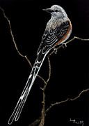 Flycatcher Originals - Oklahoma State Bird by Linda Hiller