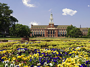 Poster Print Photos - Oklahoma State Flowers Bloom  by Oklahoma State University