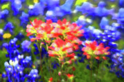 Notecard Prints - Oklahoma wildflowers Print by Toni Hopper