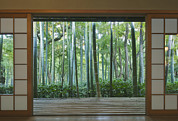 Building Feature Metal Prints - Okochi Sanso Villa Bamboo Garden Metal Print by Rob Tilley