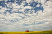 Field. Cloud Photo Prints - Old Abandoned Red Barn In The Midst Print by Robert Postma