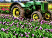 Farm Equipment Prints - Old and New Print by Bonnie Bruno
