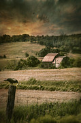 Omnimous Posters - Old barm in farm field at sunset Poster by Sandra Cunningham