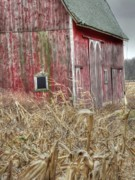 Old Barn Posters - Old barn -- Old corn Poster by David Bearden