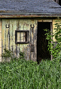 Barn Door Photo Framed Prints - Old Barn Door Framed Print by Jill Battaglia