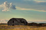Broken Down Photos - Old Barn In A Field by Matt Dobson