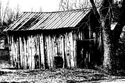 Shed Digital Art Metal Prints - Old Barn In Black And White Metal Print by Ronald T Williams