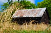 Barn Digital Art Metal Prints - Old Barn in Roxborough Metal Print by Bill Cannon