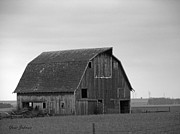 Barns Pyrography Metal Prints - Old Barn in winter Metal Print by Yumi Johnson
