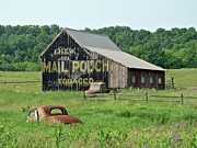 Split Rail Fence Prints - Old Barn Mail Pouch Tobacco Advertising Print by Carol Senske
