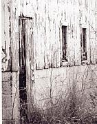 Mnkreations Metal Prints - Old Barn Metal Print by Michelle Kelnhofer