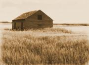 Old Ruins Posters - Old Barn on the Prairie  Poster by Garry Staranchuk