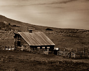 Emmett Prints - Old Barn Print by Robert Bales