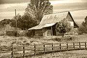 Old Barn Sepia Tint Print by Susan Leggett