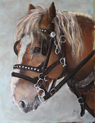 Work Pastels Prints - Old Ben Print by Mitzi Nelson