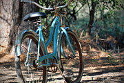 Todd A Blanchard Art - Old Bicycle by Todd A Blanchard