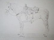 Rodeo Art Drawings - Old Blue by Rich Kelly