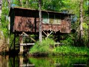 Country Scenes Photo Originals - Old Boat House by Barbara Bowen