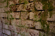 Alcatraz Photos - Old Brick by Ty Helbach