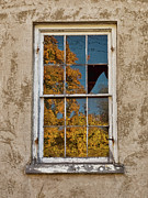 Peeling Paint Prints - Old Broken Window Print by Michael Flood