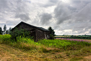 Loneliness Photos - Old Building by Matt Dobson