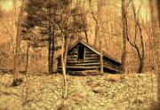 Log Cabin Prints - Old Cabin Print by E Robert Dee