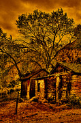 Burros Art - Old Cabin in the Red Rock Canyon by David Patterson