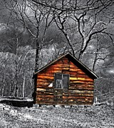 Mountain Cabin Posters - Old Cabin in the woods Poster by Dave Sandt