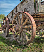 Wagon Wheels Photos - Old Carriage by David  Naman