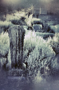 Haunted Hills Posters - Old Cemetery on a Hill Poster by Jill Battaglia