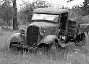 Old Chevy Truck Print by Steve McKinzie