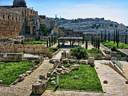 Jerusalem Photos - Old City by Douglas Barnard