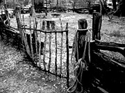 Corral Metal Prints - Old Corral Metal Print by Sandy Tracey