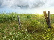 Rustic Photos - Old country fence on the prairies by Sandra Cunningham