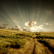 Field. Cloud Posters - Old Country Road And Sunset Poster by Moosebitedesign