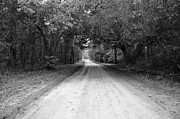 Mark Giarrusso - Old Dirt Road