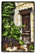 Grape Vines Pyrography Prints - Old Door 2 Print by Mauro Celotti