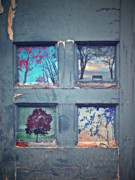Photomanipulation Prints - Old Doorways Print by Tara Turner