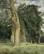 Wooded Park Framed Prints - Old elms in Prater Framed Print by Ferdinand Georg Waldmuller