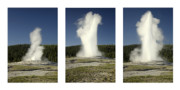 Yellowstone Park Prints - Old Faithful Print by Andrew Soundarajan