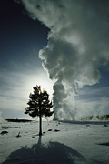 Old Faithful Geyser Framed Prints - Old Faithful Geyser Erupting In Winter Framed Print by Raymond Gehman
