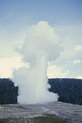Volcanism Photos - Old Faithful Geyser Erupts About Once by Gordon Wiltsie