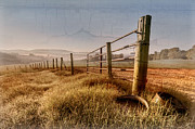 Sunset Greeting Cards Prints - Old Farm Gate  Print by Debra and Dave Vanderlaan