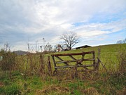 Old Things - Old Farm Gate by Pauline Ross