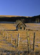 Without People Photos - Old Farm, Near Cochrane, Alberta by Darwin Wiggett