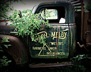 Classic Truck Photos - Old Farmers Union Truck by Perry Webster