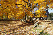 Wooden Fence Posters - Old Farmroad with Autumn Colors Poster by George Oze