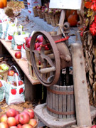 Old Things - Old fashion apple press by Pauline Ross