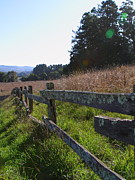 Tomales Bay Prints - Old Fence And Landscape At Point Reyes California . 7D9742 Print by Wingsdomain Art and Photography